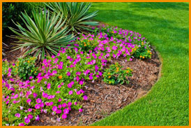 Protecting Your Foundation Landscaping