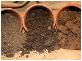 Types of Texas Soil