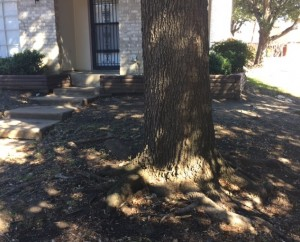 One of the two biggest two slab foundation repair issues in Dallas, Fort Worth and Arlington