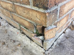 Foundation watering during cold weather