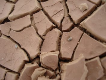 The Threat to Your Foundation From Expansive Clay Soil